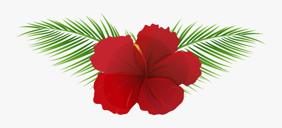 Exotic Flower Transparent Clip Art Imageu200b Gallery - Transparent Background Tropical Flowers Png, Transparent Clipart