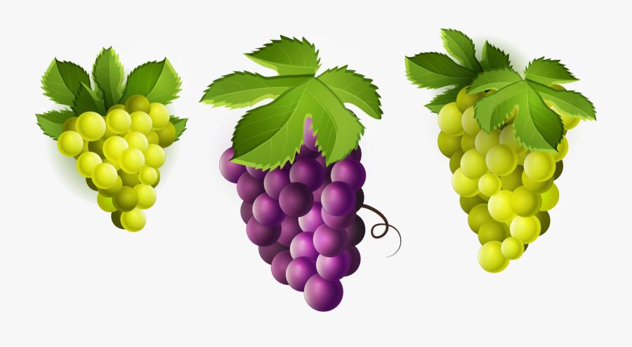 Grape Clipart Png Image - Green Fruits Clip Art, Transparent Clipart