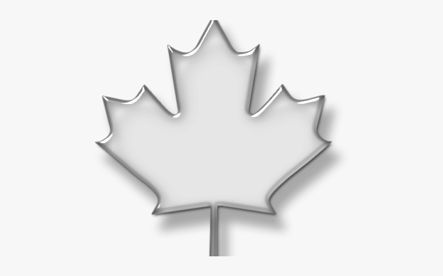 Leaves Clipart Maple Leaf - Transparent Transparent Background Transparent Maple, Transparent Clipart