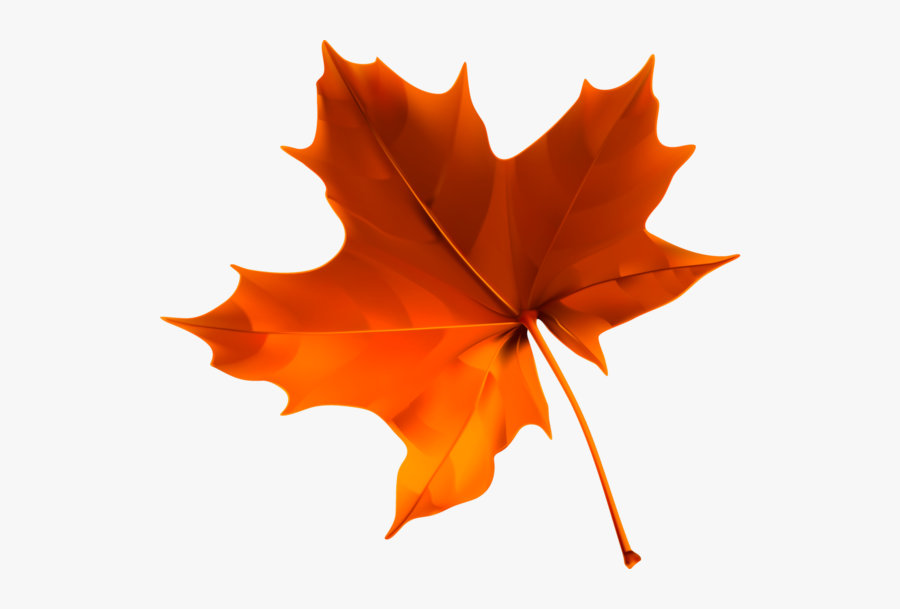 Fall Leaves Png Transparent, Transparent Clipart