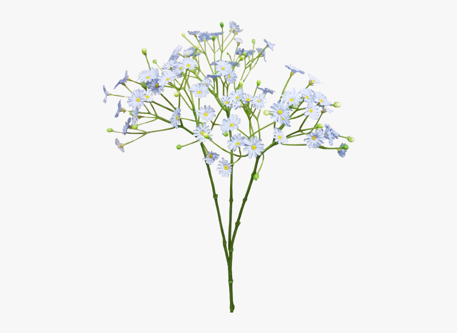 """Baby""""s Breath Png - Baby Breath Flower Png, Transparent Clipart"""