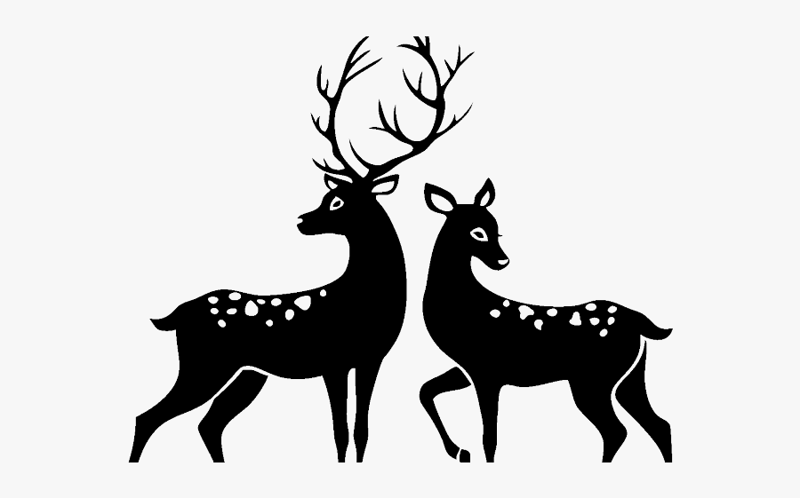 Buck And Doe Cartoon, Transparent Clipart