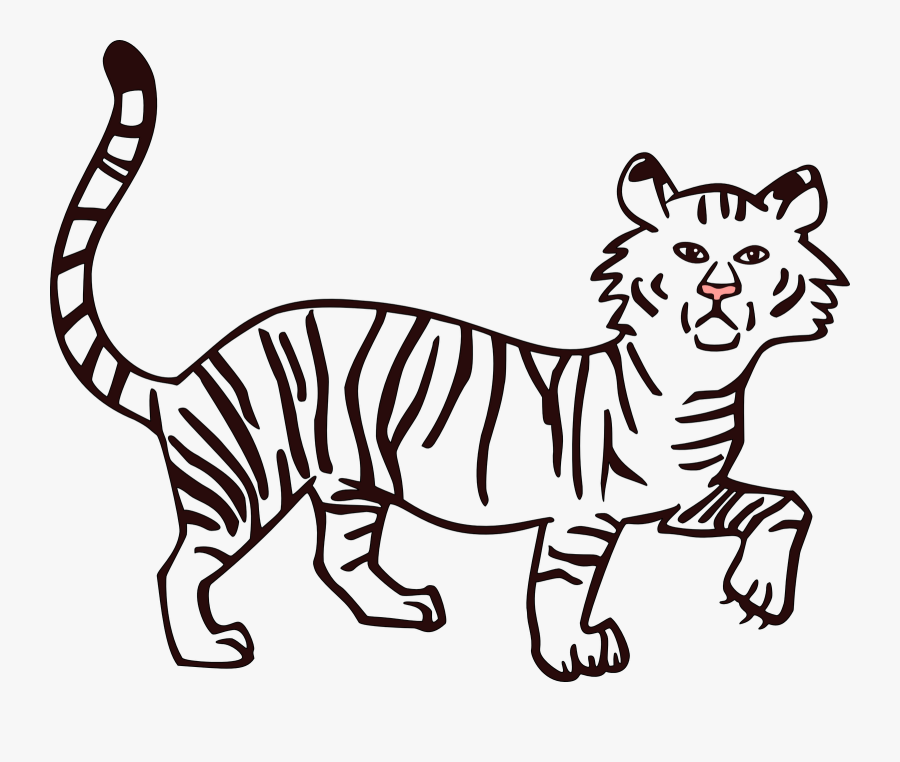 Drawn White Tiger Transparent - Drawn Picture To Fill In Color, Transparent Clipart
