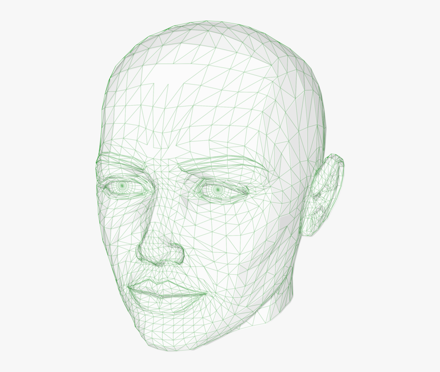 Head,neck,jaw - 3d Wireframe Head Svg, Transparent Clipart
