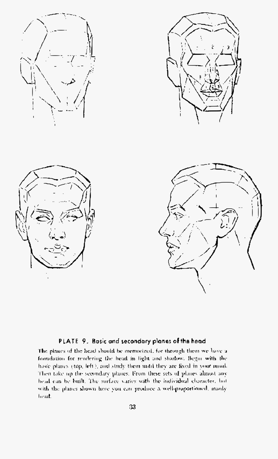Class Drawing Anatomy - Drawing Head Andrew Loomis, Transparent Clipart