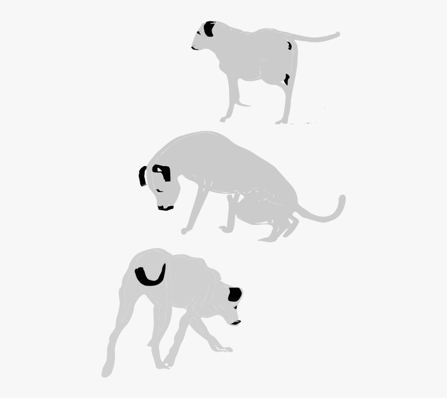 Wildlife,small To Medium Sized Cats,carnivoran - Bull Terrier (miniature), Transparent Clipart
