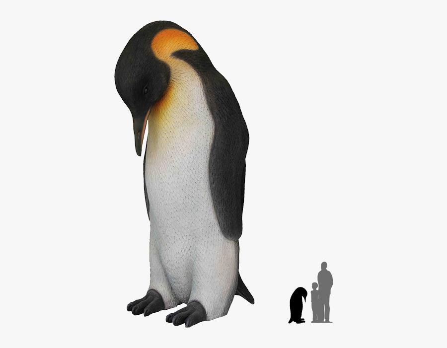 Real Emperor Penguin No Background, Transparent Clipart