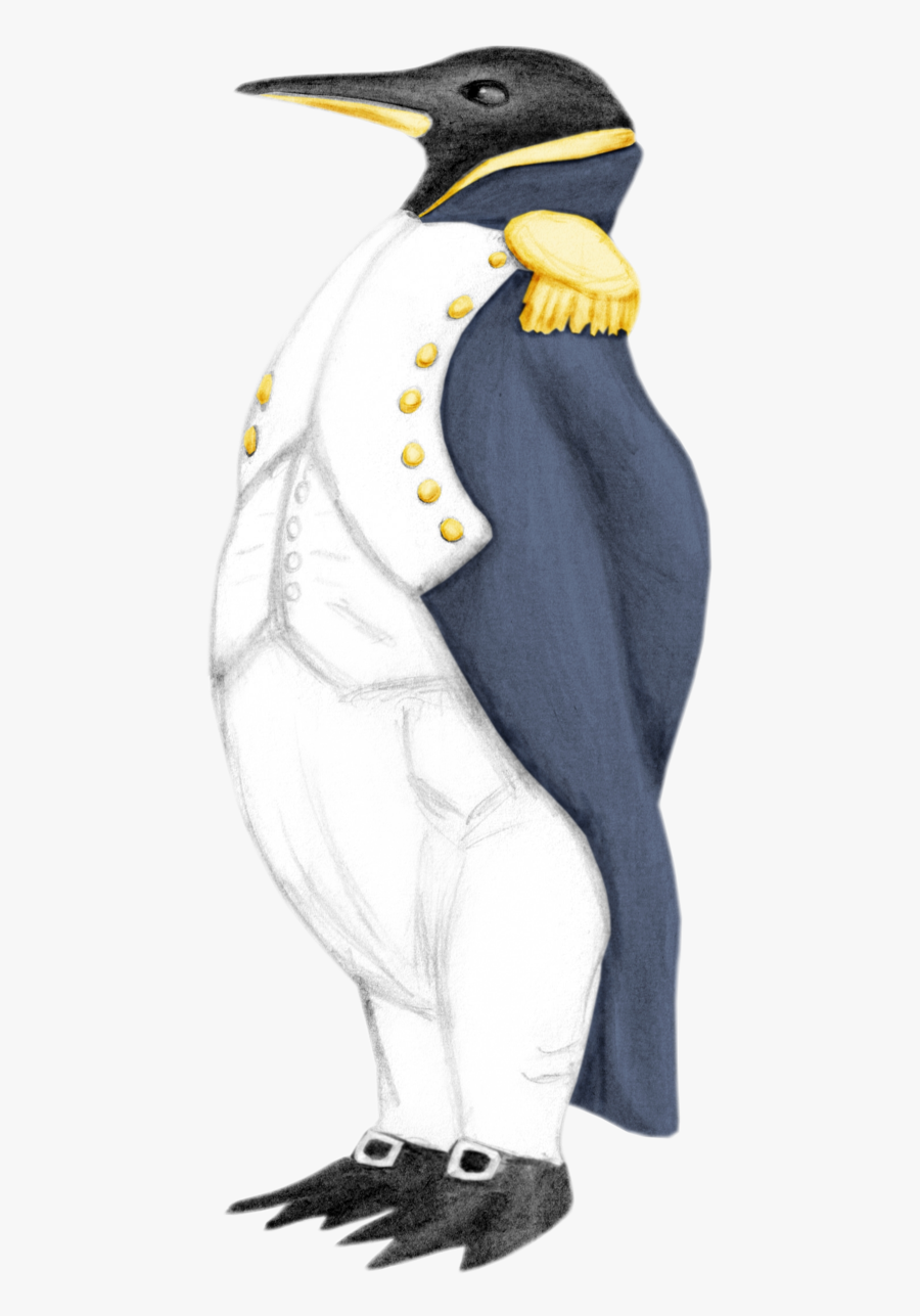 Emperor Penguin Drawing At Getdrawings - Drawing Emperor Penguin, Transparent Clipart