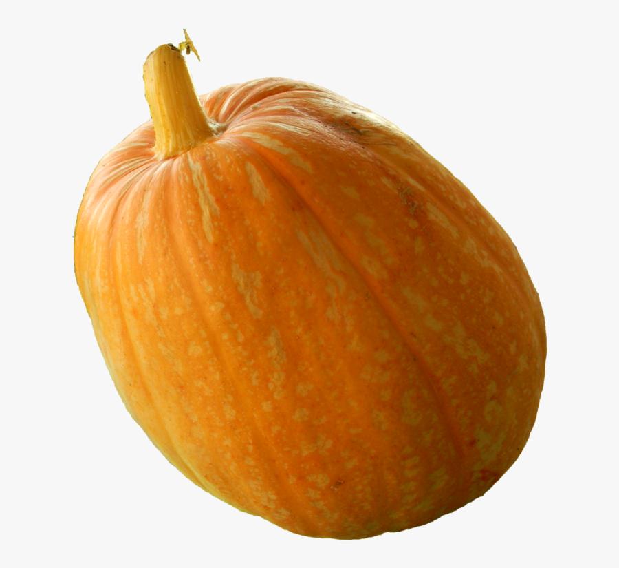 Download Real Pumpkin Png Transparent Image - Png Real Pumpkin, Transparent Clipart