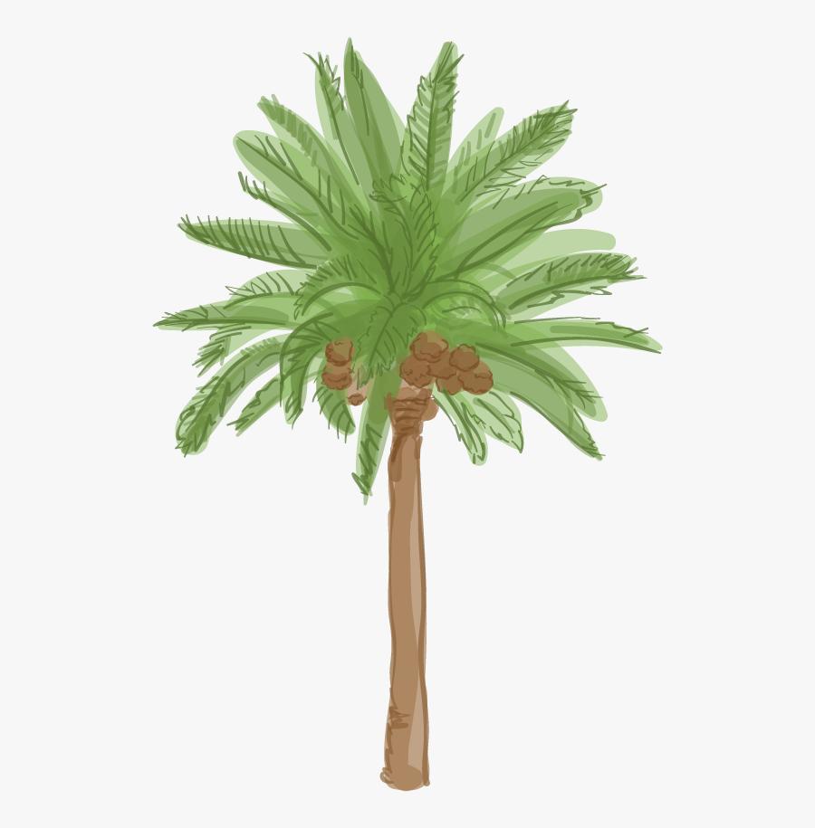 Date Palm Tree Cartoon, Transparent Clipart