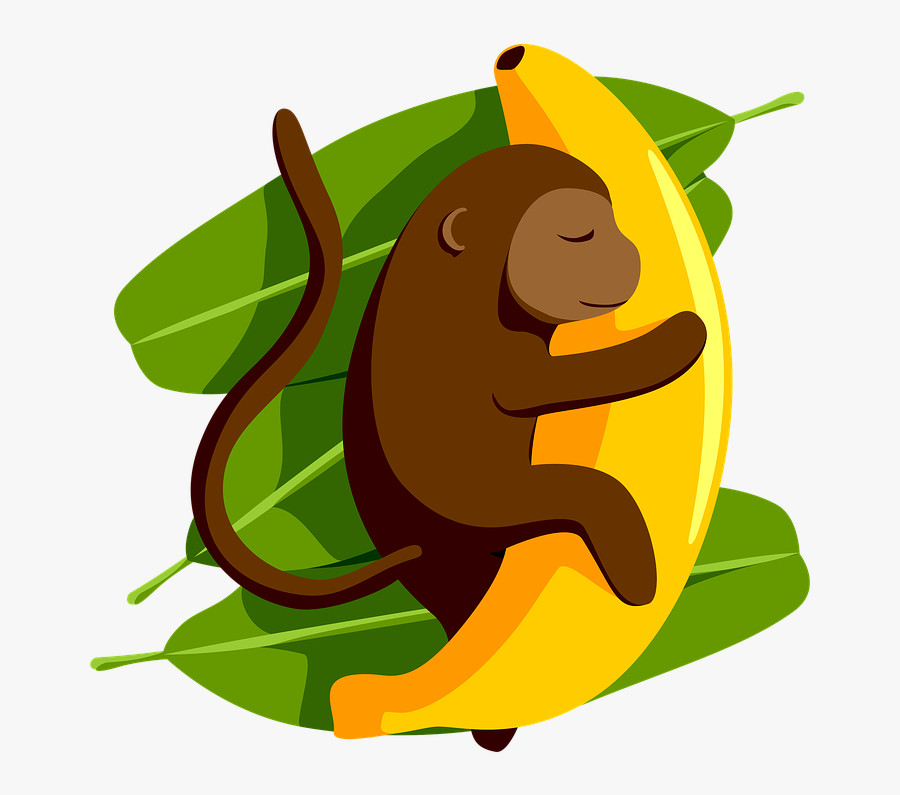 Monkey, Banana, Dream, Exotic, Sleeping, Animal - Illustration, Transparent Clipart