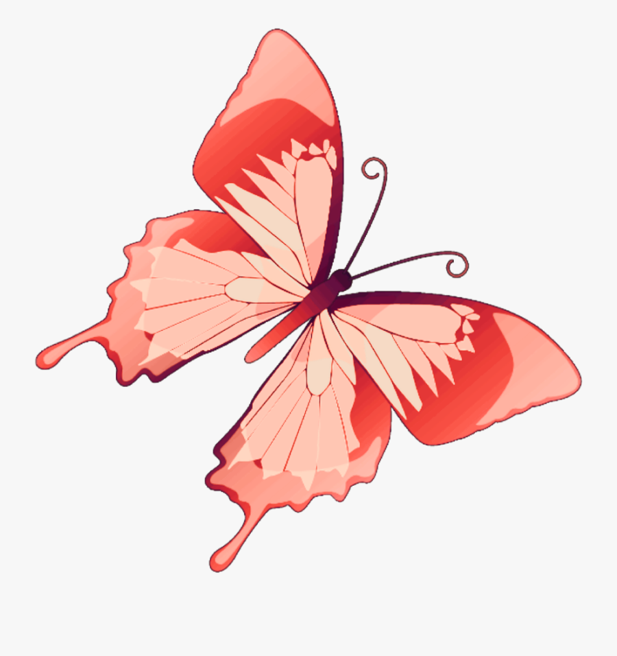 #butterfly #mariposa #diurna #day #diurnal #spring - Butterfly Vector, Transparent Clipart