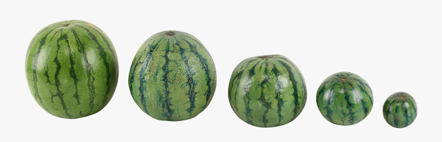 Family Photos, Water Melon, Fruit, Food, Family Pictures, - 美味しい スイカ の 見分け 方, Transparent Clipart
