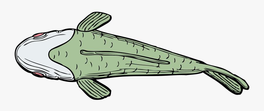 Line Art,line,fish - Fish Top View Cartoon, Transparent Clipart