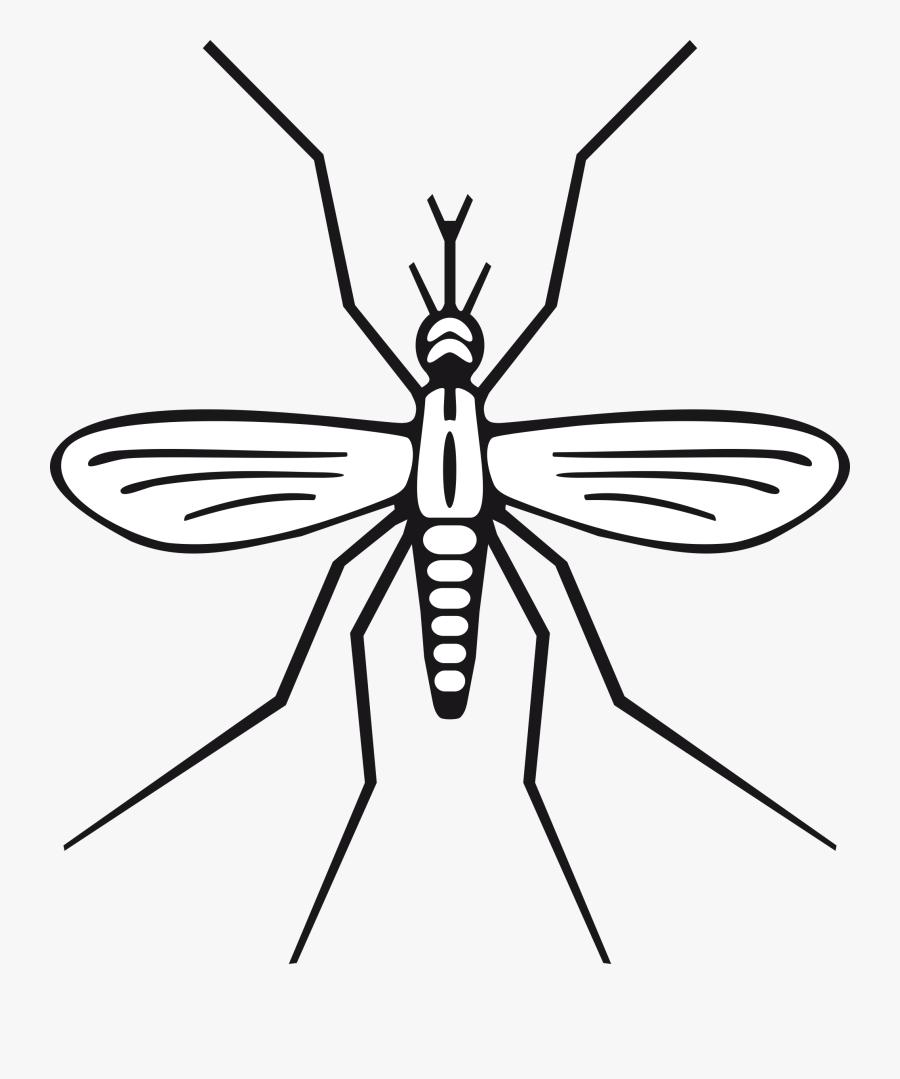 Mosquito Clip Art 2 Clipartbarn - Mosquito Clip Art, Transparent Clipart