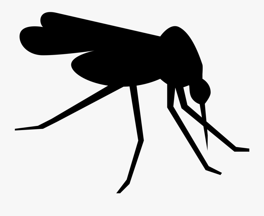 Dengue G The Exhibition - Mosquito Icon Png, Transparent Clipart