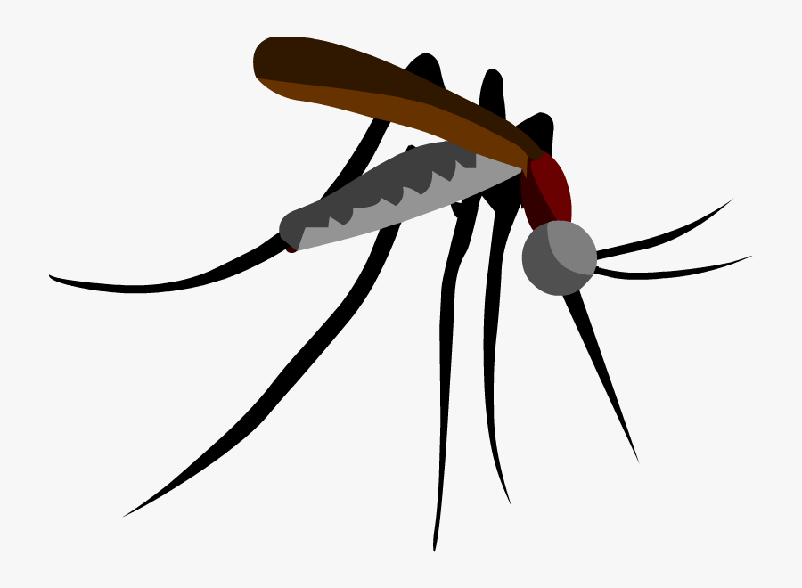 Parasitism Drawing Mosquito Clipart Black And White - Mosquito Cutout, Transparent Clipart