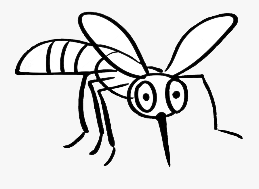Drawn Mosquito Monster - Mosquito Fight Bite Drawing, Transparent Clipart