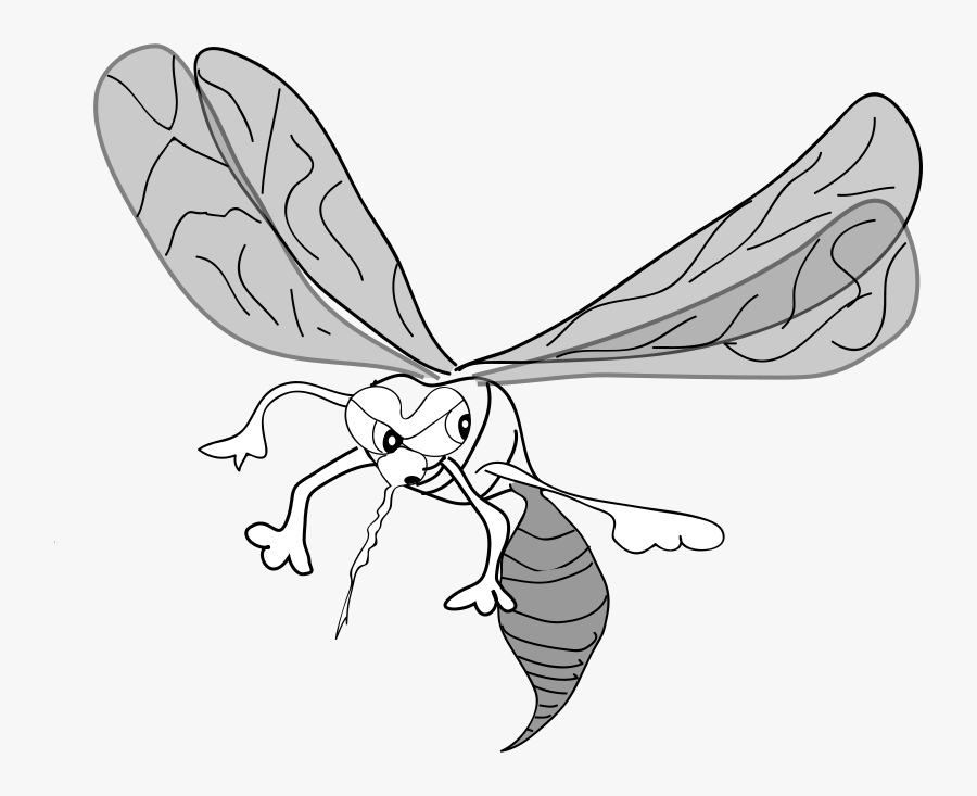 Freehand Mosquito - Mosquito Clip Art, Transparent Clipart