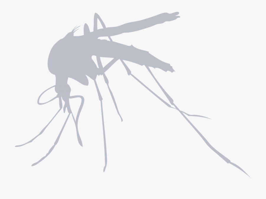 Transparent Mosquito Bite Clipart - Finnish Air Force Mosquito, Transparent Clipart