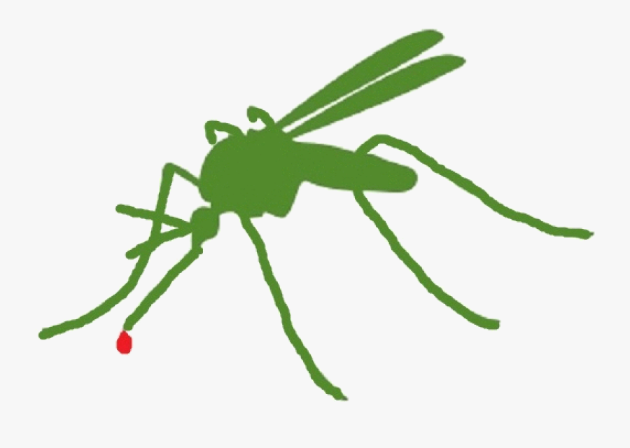 Mosquito Clipart Mosquito Control - Insect, Transparent Clipart