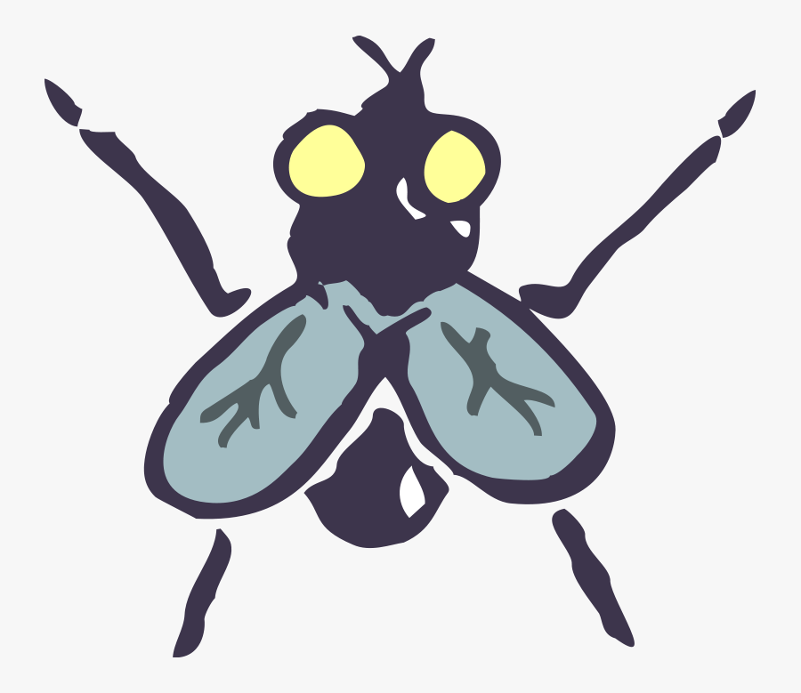 Insect 14 Free Vector - Insect Vector, Transparent Clipart