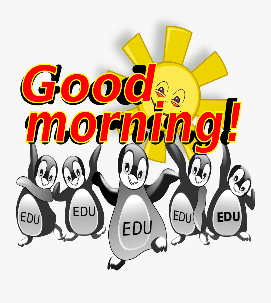 Transparent Morning Png - Wednesday Good Morning Penguin, Transparent Clipart