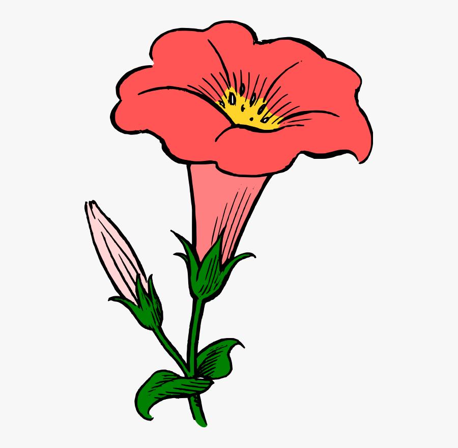 Plant,flora,art - Morning Glory Flower Clipart, Transparent Clipart