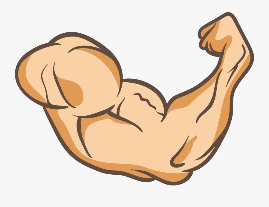 Clip Art Arms Thumb Muscle Clip - Transparent Muscle Arm Png, Transparent Clipart