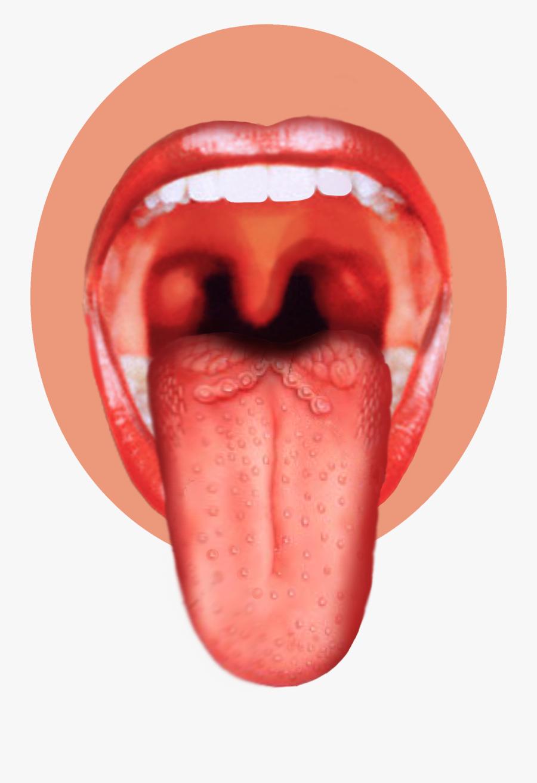 Tongue Clipart Png - Nose Tongue Sense Organs, Transparent Clipart