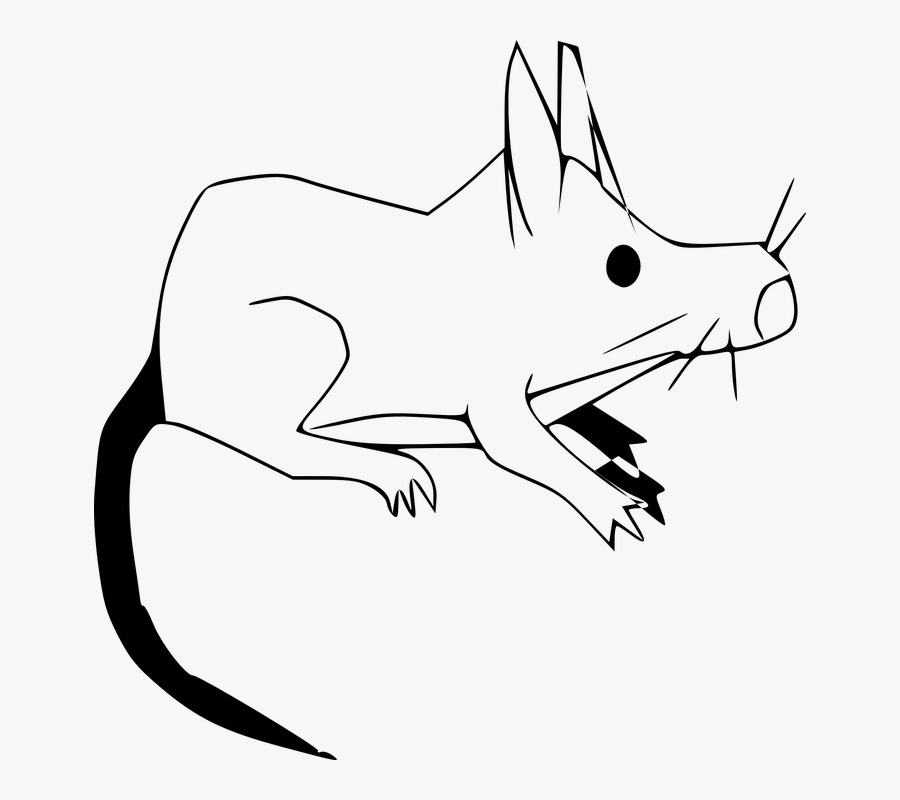 Stove Clipart Gambar Hewan Tikus Hitam Putih Free Transparent Clipart Clipartkey