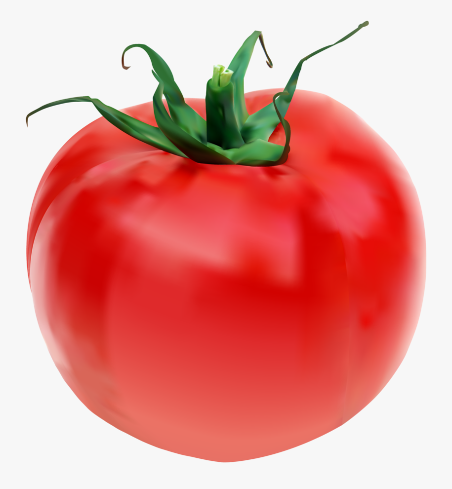 Collection Of Free Tomato Drawing Object Download On - Tomato, Transparent Clipart