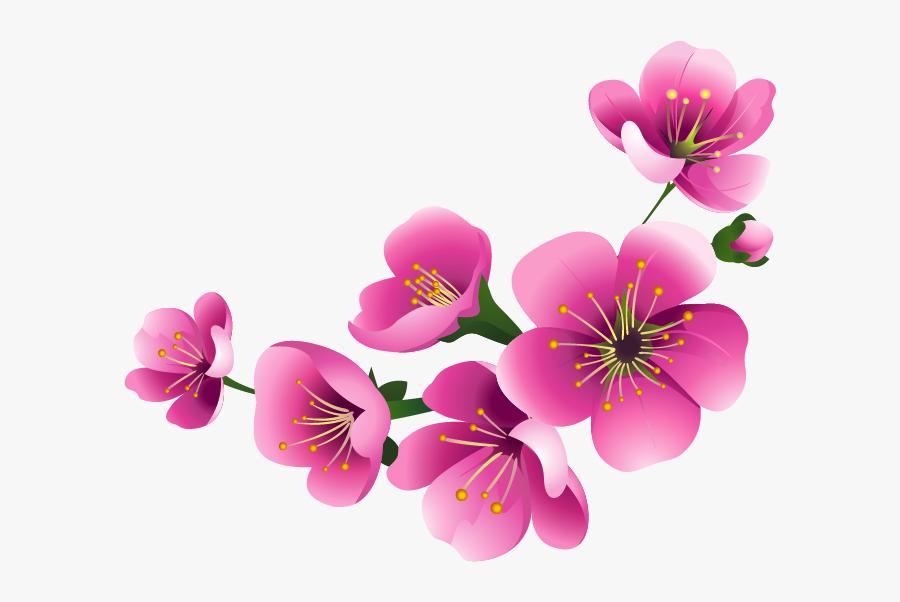 Transparent Free Flower Clipart Borders - Moth Orchid, Transparent Clipart