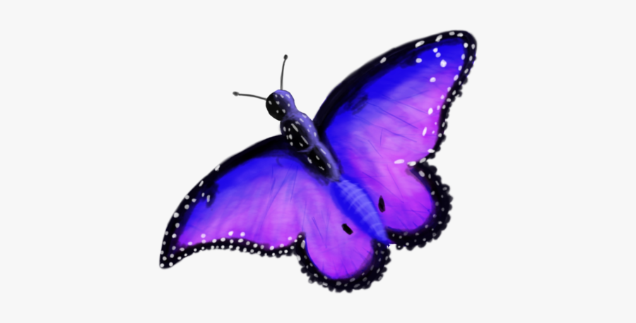 Collection Of Free Butterflies - Transparent Background Enchanted Butterfly Clipart, Transparent Clipart
