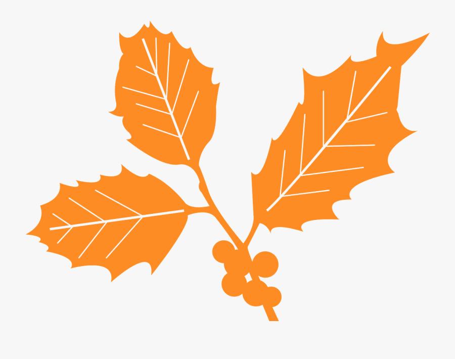 Holly Leaf Vector, Transparent Clipart