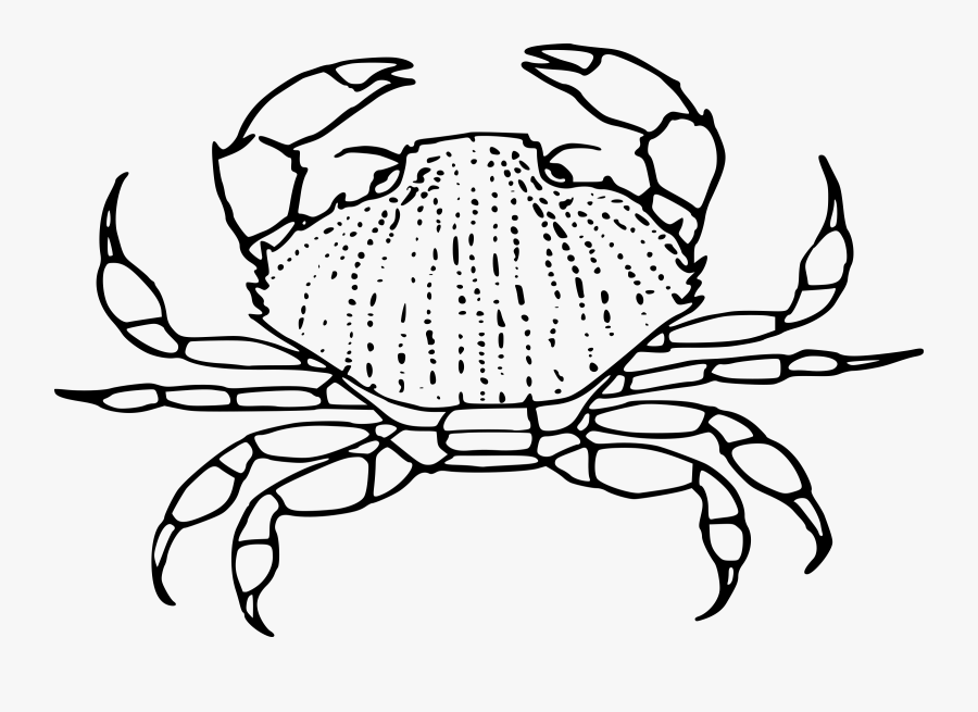 Crab Big Image Png - Black And White Crab Clipart, Transparent Clipart