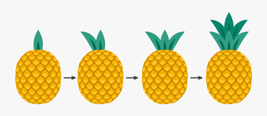 Pineapple Illustrator, Transparent Clipart