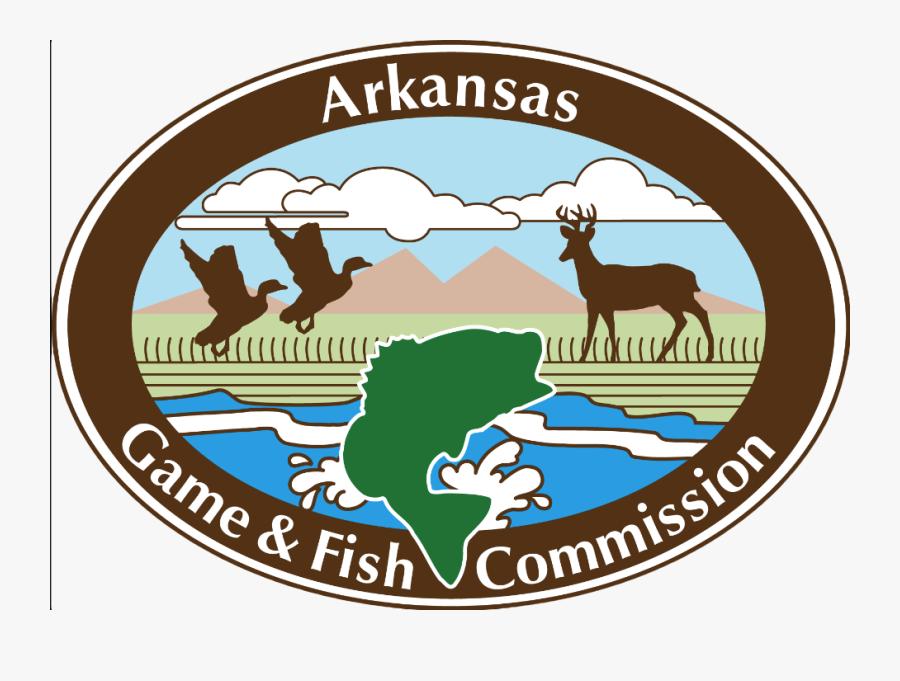 Public Duck Hunting In Ne Arkansas - Arkansas Game And Fish Logo, Transparent Clipart