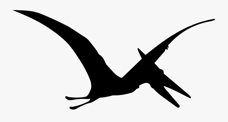 Pterodactyl Dinosaur Bird Shape - Pterodactyl Clipart Black And White, Transparent Clipart