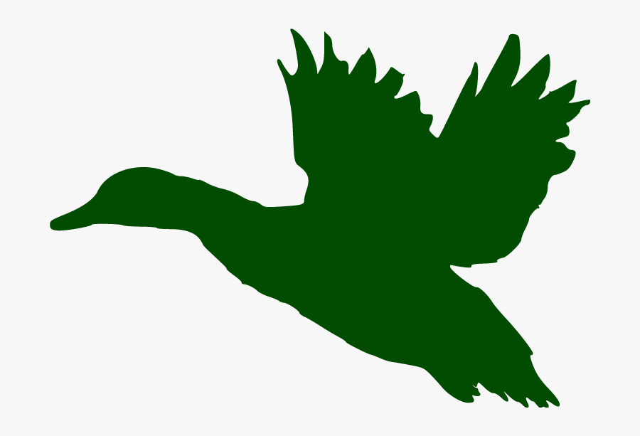 A Sporting Chance Guide - Flying Duck Silhouette Png, Transparent Clipart