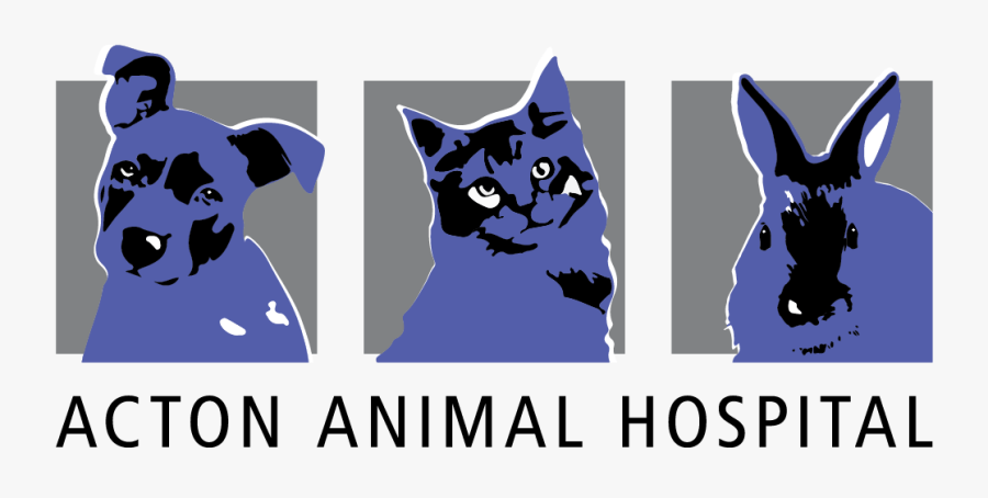 Acton Animal Hospital - Cartoon, Transparent Clipart