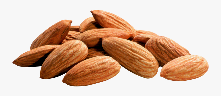 Download Almond Png Image - Almond Oil For Dark Circles In Urdu, Transparent Clipart