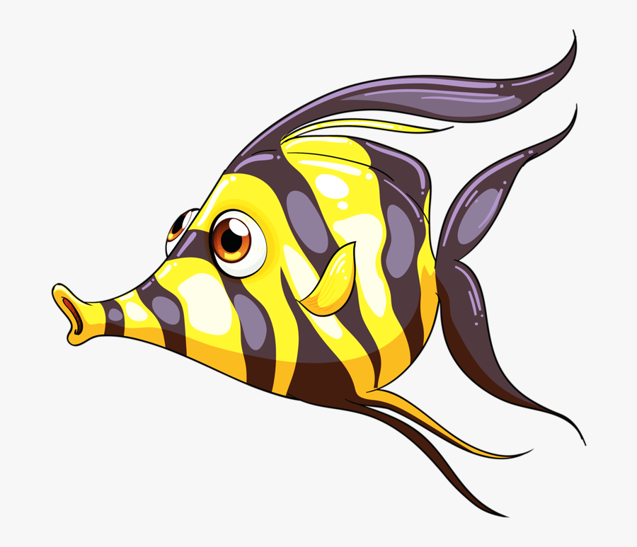 Desenhos De Peixes Coloridos, Transparent Clipart