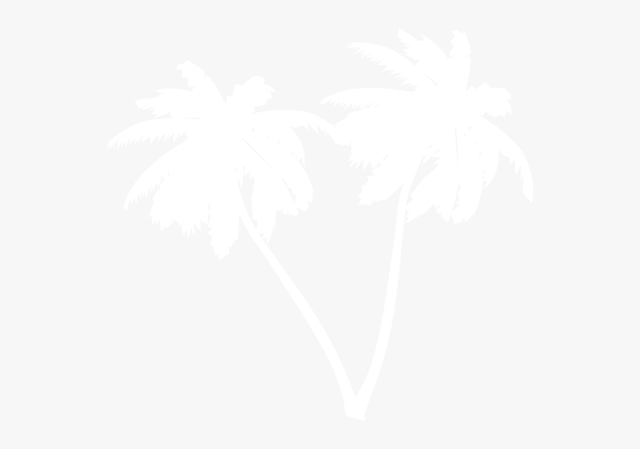 Transparent Coconut Tree Clipart Black And White - Vector Palm Tree White Png, Transparent Clipart