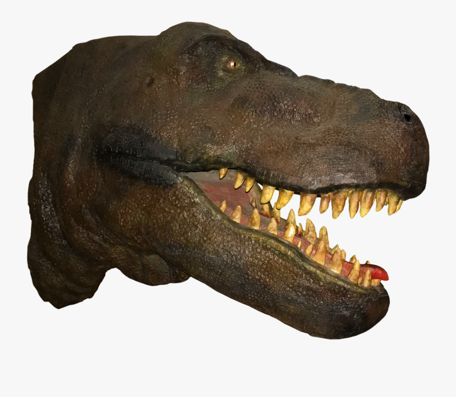 T Rex Head Png, Transparent Clipart