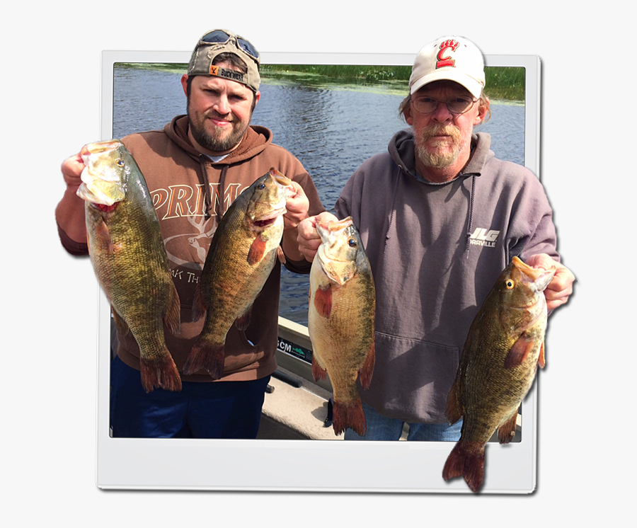 Lake Nipissing Bass Fishing, Transparent Clipart