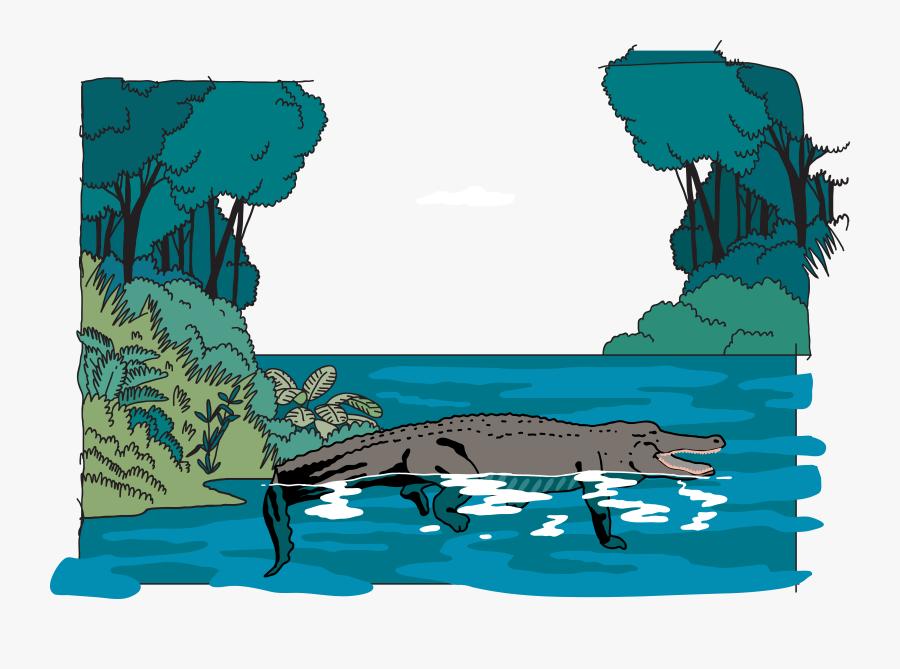 Amazon Rainforest Jungle Euclidean Vector Illustration - Amazon Rainforest Clipart Transparent, Transparent Clipart