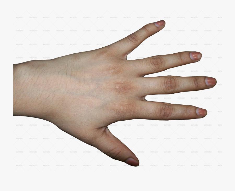 Handprint Transparent Human - Back Of Human Hand, Transparent Clipart