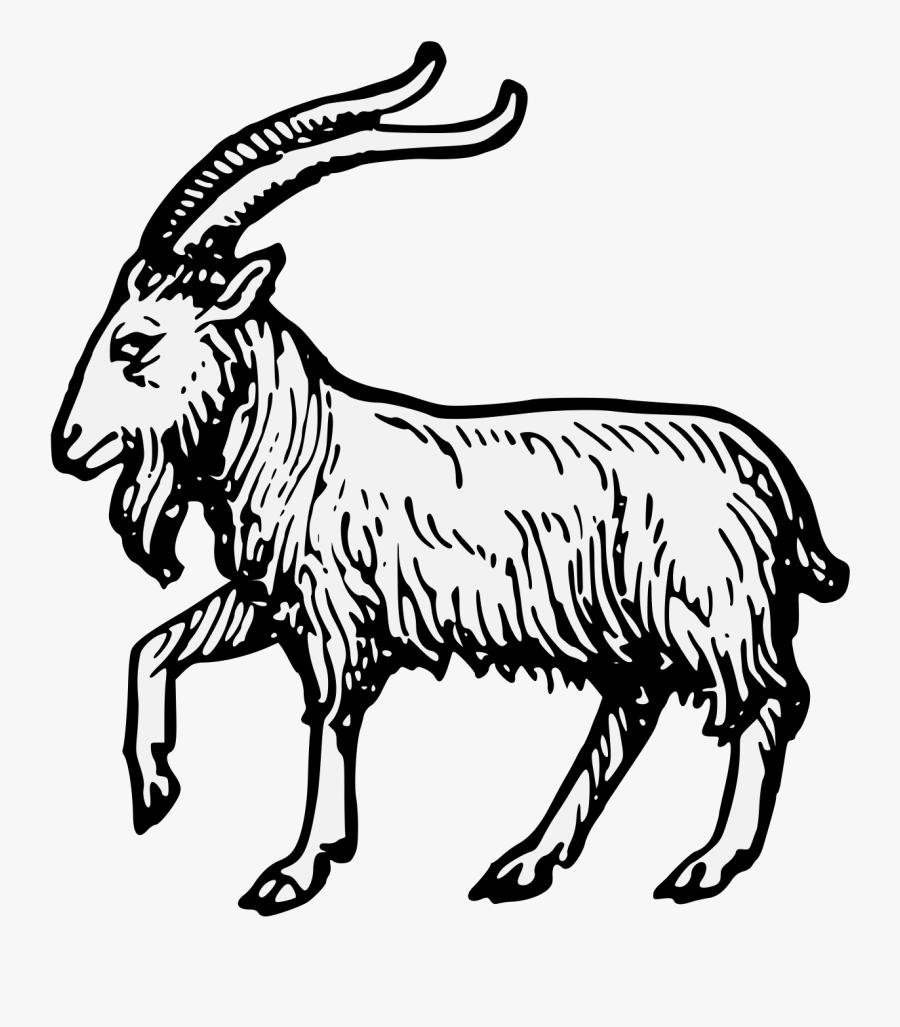 Antelope,line Art,horn,feral Goat,cow Goat Family,head,clip - Goat Passant, Transparent Clipart