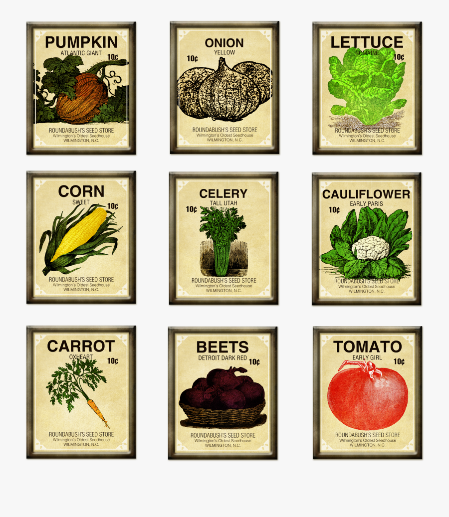 Vintage Seed Packet Clipart - Vegetable Seeds Clipart Free, Transparent Clipart